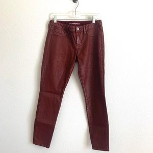 Faux Leather Maroon Pant